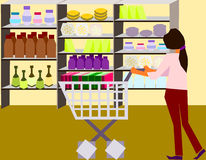 Let's Go Shopping!. A woman choosing something good to eat for her family vector illustration