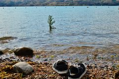 Let`s go for a swim!. A man left his sneakers on the shore of a mountain lake Royalty Free Stock Image