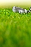 Let's golf. Close up of a golf ball on the grass Royalty Free Stock Photography