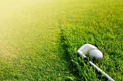 Let's golf. Close up of a golf ball on the grass Stock Photography