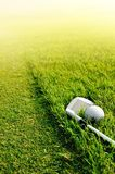 Let's golf royalty free stock images