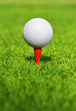 Let's play golf. Close up of a golf ball on the tee Royalty Free Stock Image