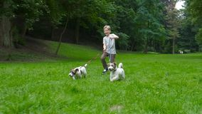 Let`s play together concept. Caucasian blond child boy walk and run with his two dogs Jack Russell Terrier by park in