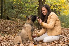 Let`s Share, woman with her dog. Outdoors Royalty Free Stock Photos