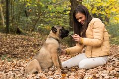Let`s Share, woman with her dog. Outdoors Stock Images