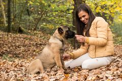 Let`s Share, woman with her dog. Outdoors Stock Image