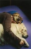 Let Sleeping Dogs Cuddle. Original photo of a girl cuddled up next to a golden retriever dog Stock Photos