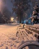 Let it snow  royalty free stock photos