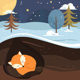Let it snow. Fox sleeping in the hole. Royalty Free Stock Photography