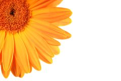 Let the sunshine in Royalty Free Stock Image