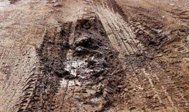 Letame sulla strada del suolo durante la pioggia della stagione immagini stock libere da diritti