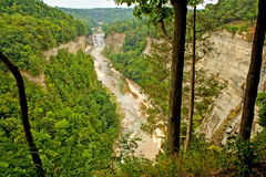 Letchworth State Park Canyon Stock Images