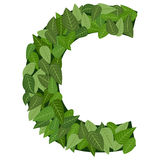 Leter C with leafs Royalty Free Stock Photography