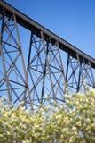Lethbridge-Viadukt mit Frühlings-Blumen Stockbild