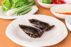 Lethocerus indicus, Giant water bug and Green Papaya Salad. Lethocerus indicus - Giant water bug and Green Papaya Salad with long-beans, roasted peanuts royalty free stock photography