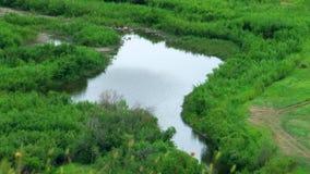 Letni dzień, widok od wzgórza zatoczka z trawą w przedpolu zbiory wideo