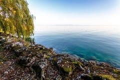 Letni dzień jeziorem Zdjęcia Royalty Free