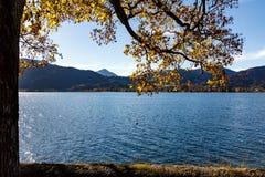 Letni dzień jeziorem zdjęcie stock