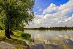 Letni dzień na jeziorze Zdjęcie Royalty Free