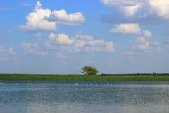 Letni dzień na wodnym krajobrazie Fotografia Royalty Free