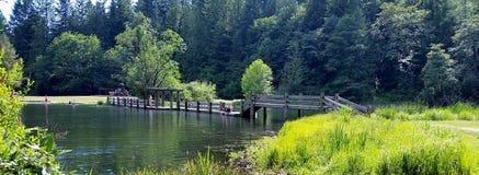 Letni Dzień przy jeziorem Fotografia Royalty Free