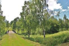 Letni dzień w Norrbotten Zdjęcie Stock