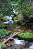 Summer stream. Photo taken during the summer Hiking Royalty Free Stock Photo