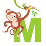 Letra animal do alfabeto - M Imagens de Stock Royalty Free