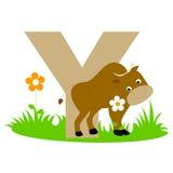 Letra animal do alfabeto - Y Fotografia de Stock Royalty Free