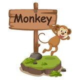 Letra animal M del alfabeto para el mono Imagen de archivo
