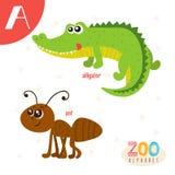 Letra A Animales lindos Animales divertidos de la historieta en vector Abucheo de ABC Fotos de archivo