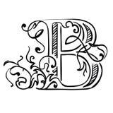 Letra B Fotografia de Stock Royalty Free