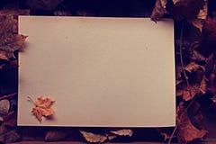 Letra com as folhas caídas outono Imagem de Stock Royalty Free