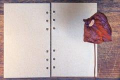 Letra con la flor secada Fotografía de archivo libre de regalías