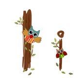 Letra de madeira mim vetor da coruja Imagem de Stock Royalty Free