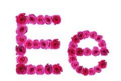 Letra e de rosas Fotos de archivo libres de regalías