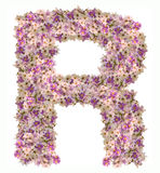 Letra el alfabeto de A con el tipo del concepto de ABC de la flor del zinnia como logotipo Imágenes de archivo libres de regalías
