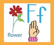 letra f dos desenhos animados alfabeto inglês creativo Conceito de ABC Linguagem gestual e alfabeto Imagem de Stock Royalty Free
