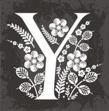 Letra floral Y   Imagem de Stock Royalty Free