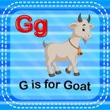 A letra G de Flashcard é para a cabra ilustração do vetor