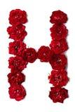 Letra H das flores da rosa do vermelho imagens de stock royalty free