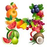 Letra H integrado por diversas frutas con las hojas stock de ilustración