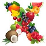 Letra X integrado por diversas frutas con las hojas libre illustration