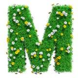 Letra M Of Green Grass y flores stock de ilustración