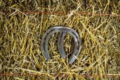 Letra M Steel Horseshoe en la paja fotografía de archivo libre de regalías