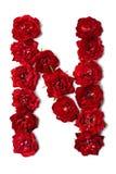 Letra N das flores da rosa do vermelho imagem de stock