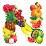 Letra N integrada por diversas frutas con las hojas libre illustration