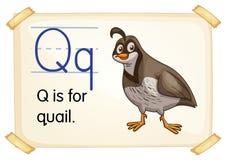 Letra Q ilustração do vetor