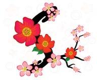 Letra S com flores ilustração do vetor
