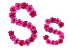 Letra s de rosas Fotos de archivo libres de regalías